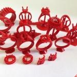 san pham may in 3D nu trang dep (14)
