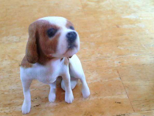 Mô hình thú cưng 3D