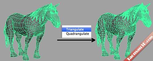 File 3D ở dạng lưới tam giác
