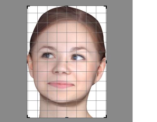 Bạn cần cắt tầm hình cho vừa khít khuôn hình